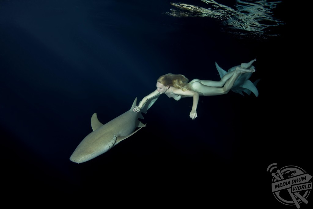 naked girl swims with the sharks