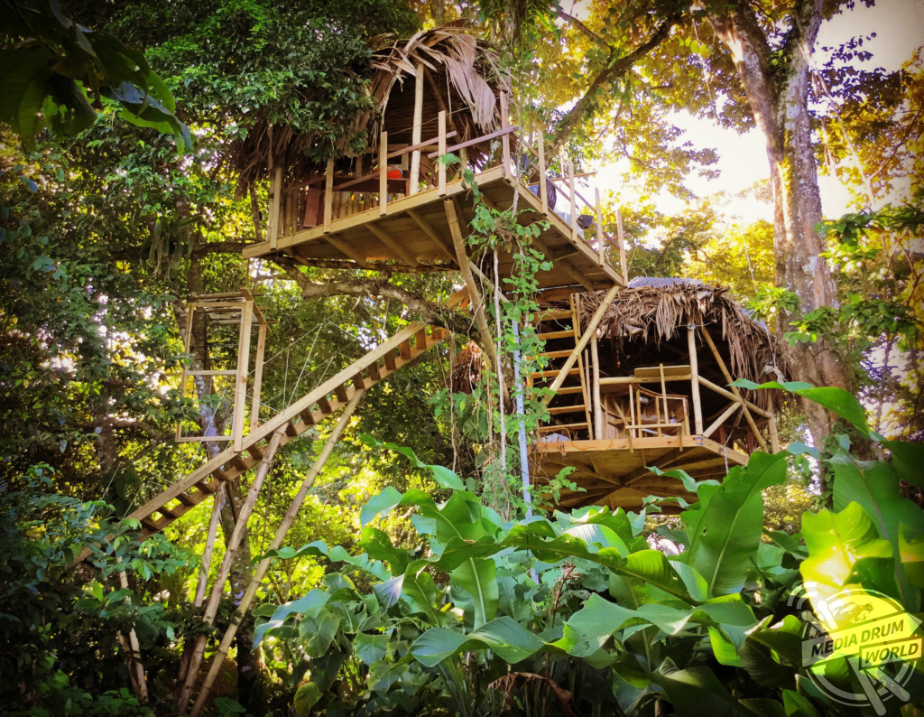 British built tree house in the caribbean jungle which for Houses built in trees